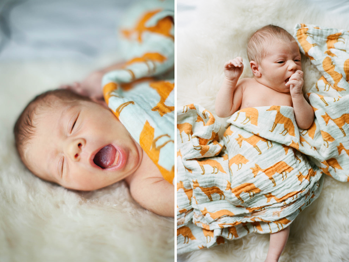 raleigh-newborn-session-1