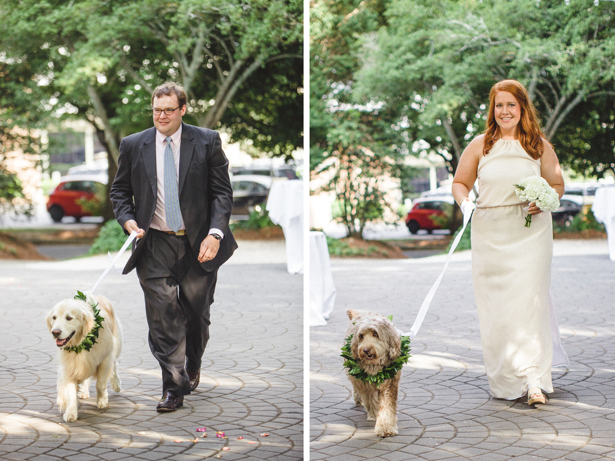 wedding-with-labradoodles