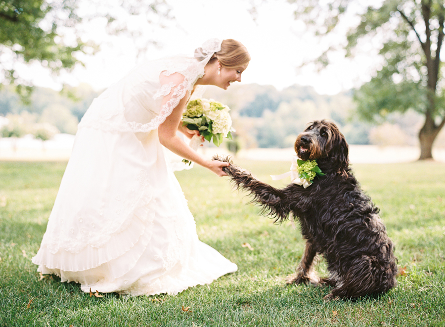 bridal-portrait-with-dog