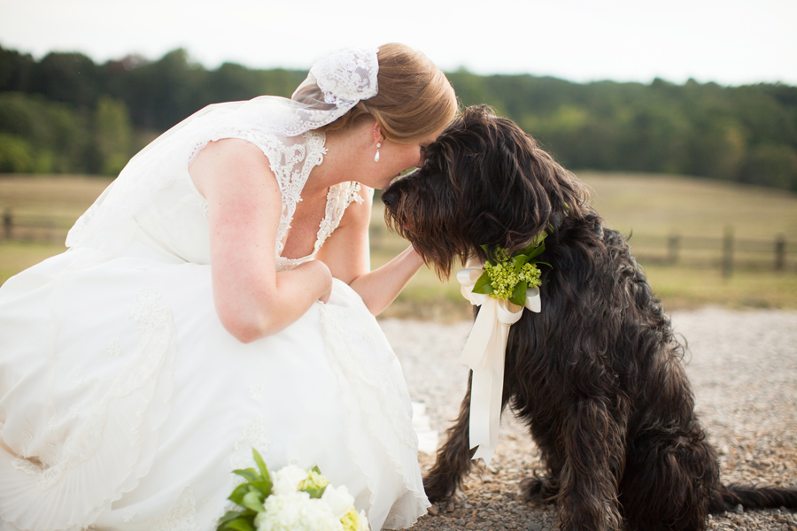 bridal-with-dog-2