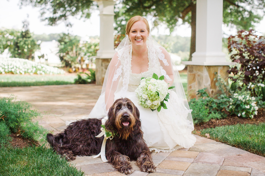 bridal-with-dog