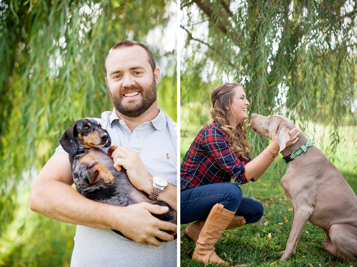 engagement-with-dogs